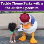 5 Tips to Tackle Theme Parks with Children on the Autism Spectrum